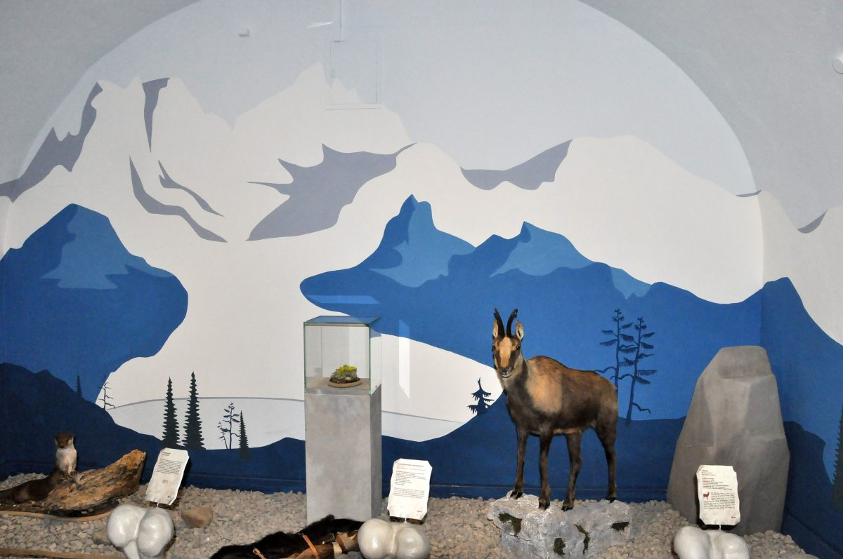 """Blick in die Ausstellung """"Eiszeitsafari"""" im Landesmuseum Koblenz, Bergwelt mit Gemse"""