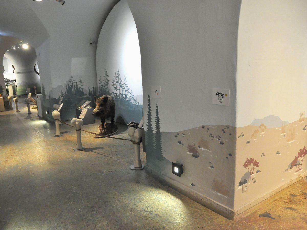 """Blick in die Ausstellung """"Eiszeitsafari"""" im Landesmuseum Koblenz, Wildschwein im Bildmittelgrund"""