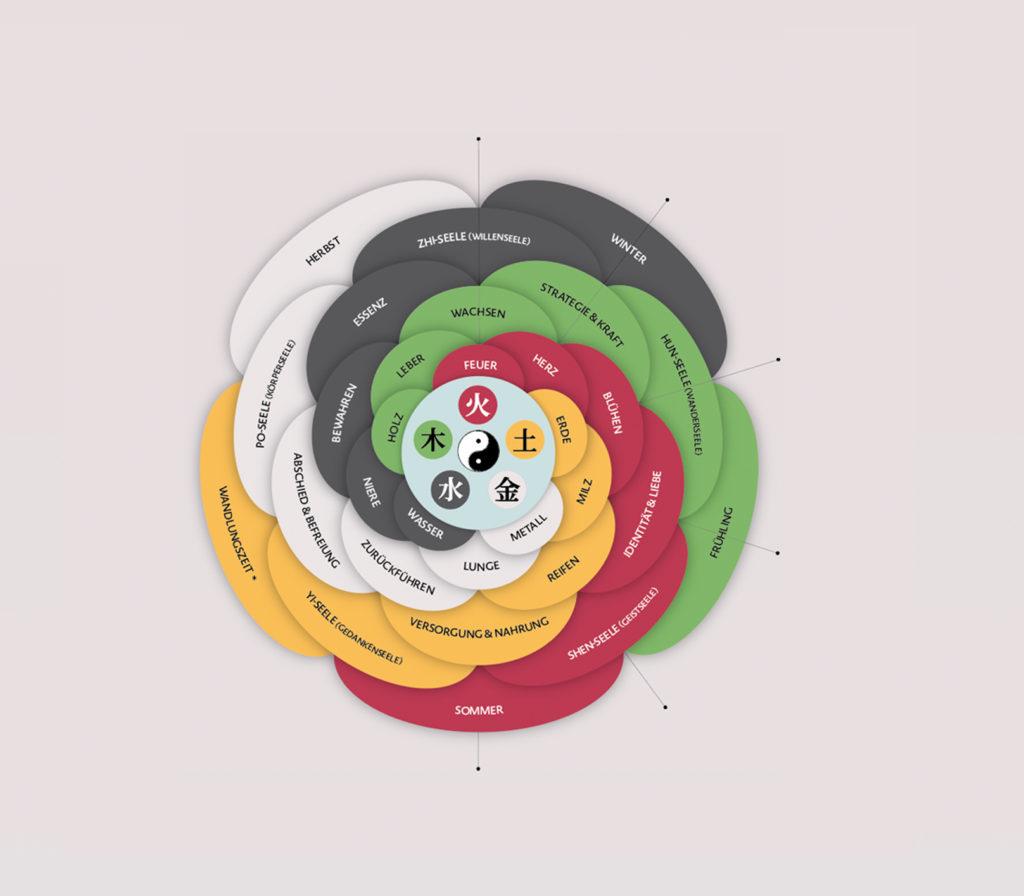 Vorschaubild, Infografik der Fünf Elemente Wu Xing und deren Bedeutung für die zugeordneten Organe